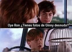 Enlace a Y así fue cómo Ron se enfadó con Harry