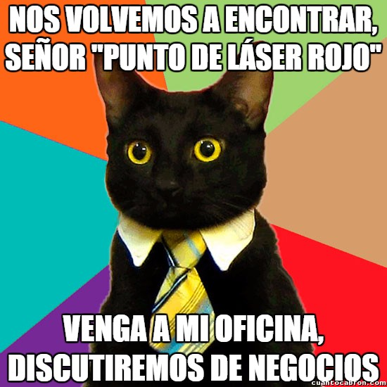 Gato_empresario - Vuelven los preferidos de los gatos