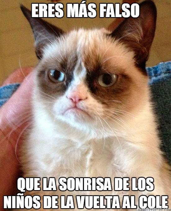 Grumpy_cat - La falsedad más extrema