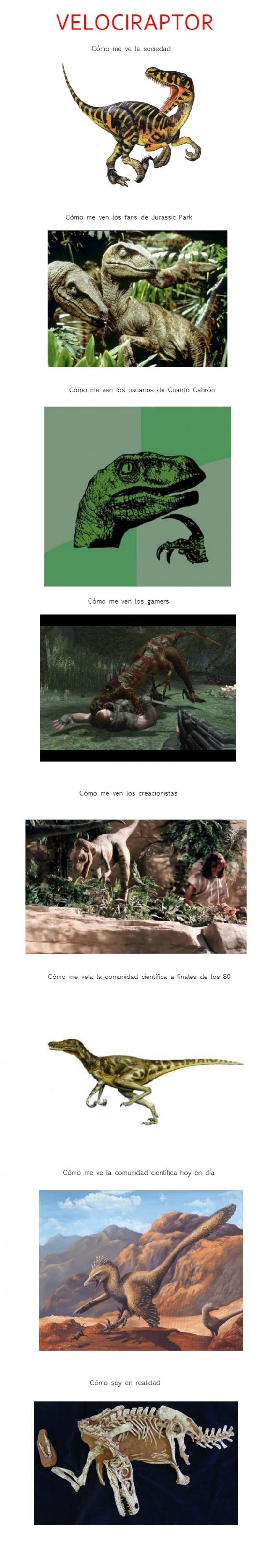 Otros - Velociraptor explicado