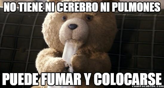 Meme_otros - Ted, el osito de peluche sin pulmones, aunque nadie lo diría