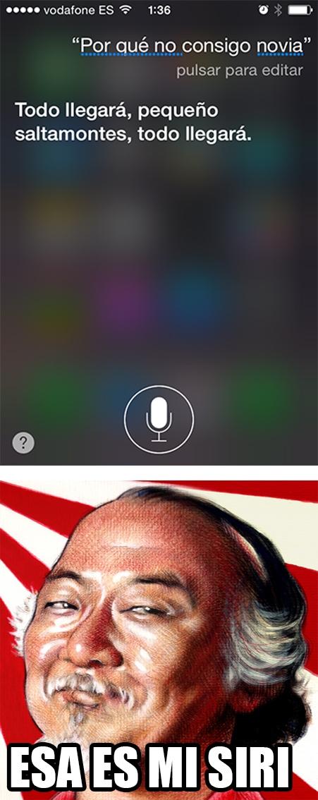 Meme_otros - El día en que Siri me convirtió en el nuevo Karate Kid