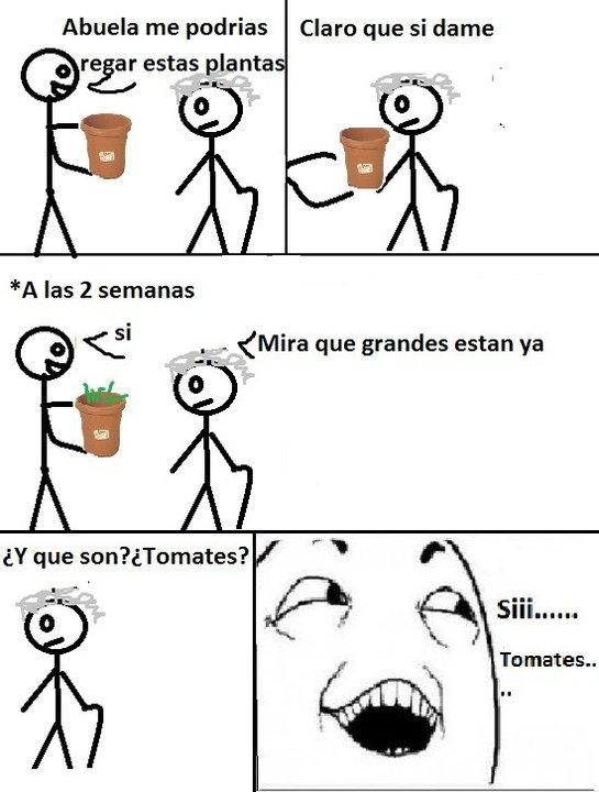 Si_claro - El típico que tiene a la abuela cuidando sus plantas