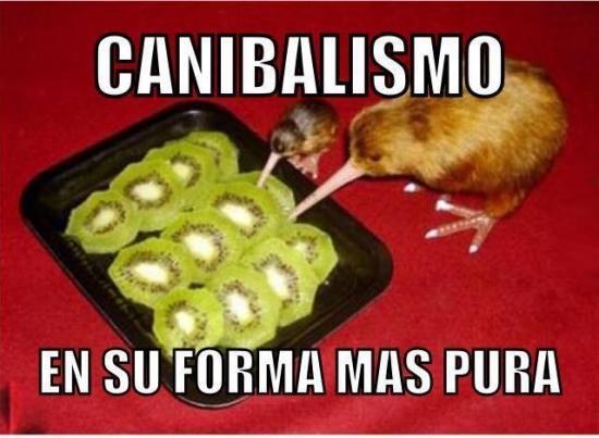 Meme_otros - Canibalismo animal extremo