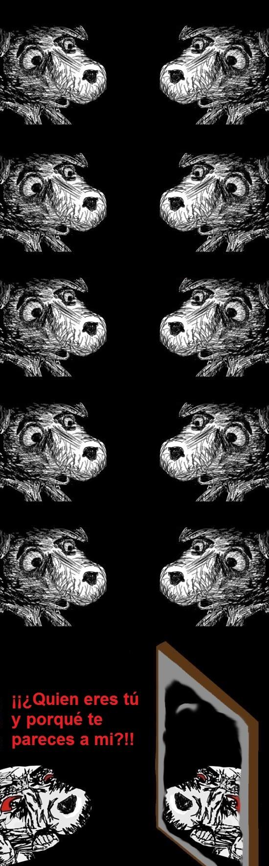 Inglip - Problemas de perros