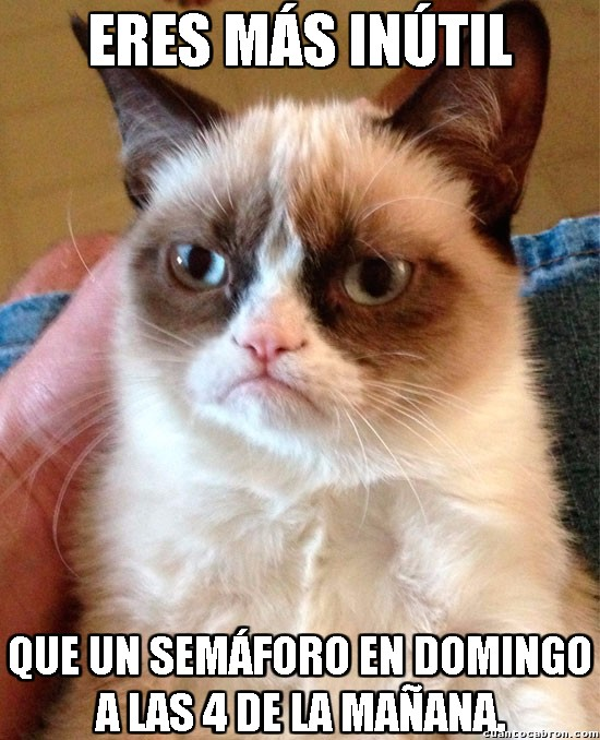 Grumpy_cat - ¿Pero es que alguien los respeta a esas horas?