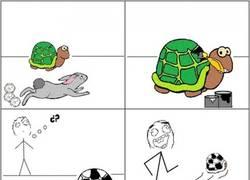 Enlace a Esta versión de la fábula de la liebre y la tortuga parece más creíble que la que todos conocemos