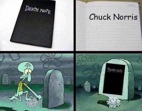 Otros - Solo la Death Note podía acabar con Chuck Norris, ¿no?