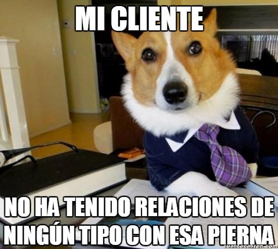 Meme_otros - Demanda por acoso canino