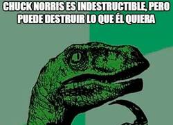 Enlace a Paradoja de Chuck Norris
