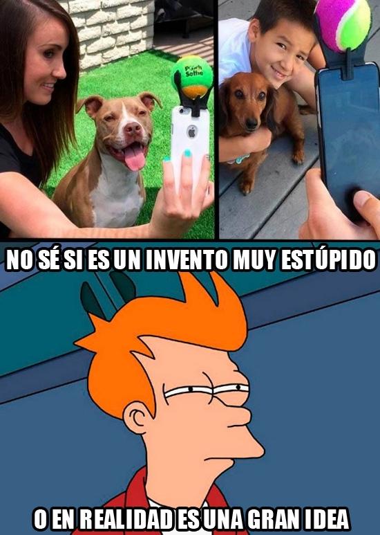 Meme_fry - Los selfies con tu perro mirando hacia otro lado ya son cosa del pasado