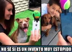 Enlace a Los selfies con tu perro mirando hacia otro lado ya son cosa del pasado