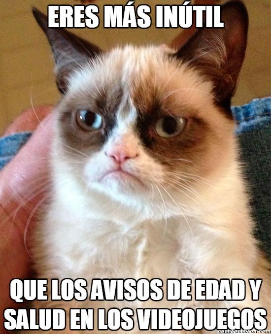 Grumpy_cat - Lo típico a lo que absolutamente nadie hace caso