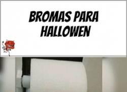 Enlace a Para irnos preparando para Halloween