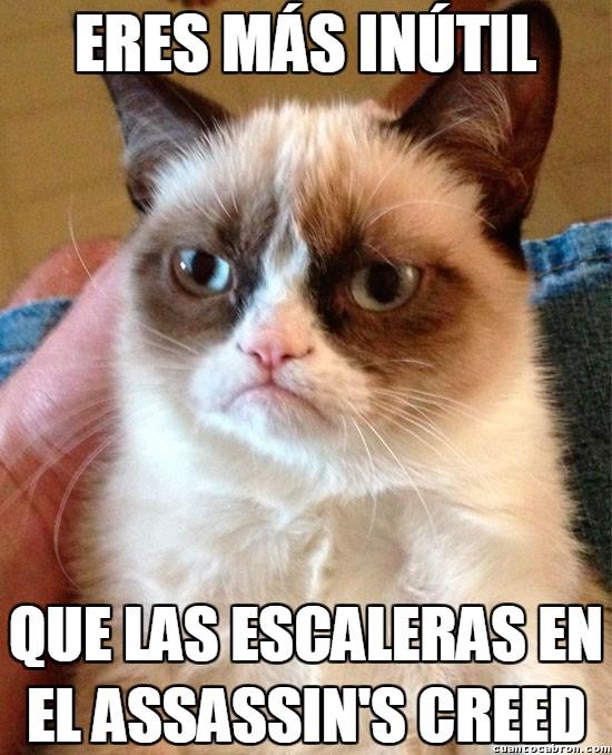 Grumpy_cat - ¿Escaleras? ¿Qué es eso?