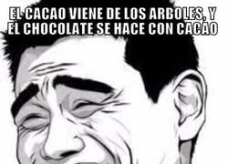 Enlace a El chocolate es ideal para hacer dieta