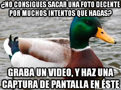 Pato_consejero - Es un sencillo método para tener buenas fotos