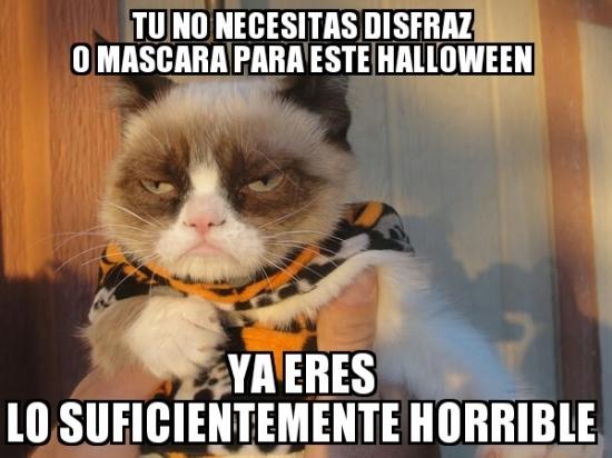 Meme_otros - Si Grumpy Cat lo dice...