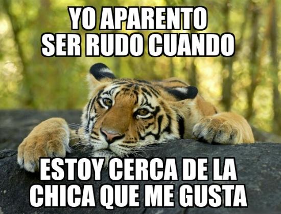 Meme_otros - El oso confesiones presenta a su amigo el tigre