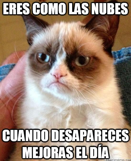Grumpy_cat - Como la nubes