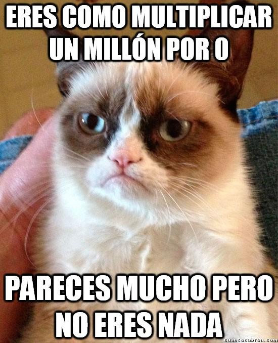Grumpy_cat - Con una simple multiplicación te puedes definir