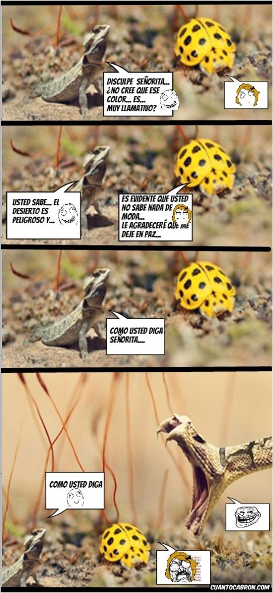 Ffffuuuuuuuuuu - La importancia del camuflaje