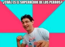 Enlace a El Superman de los perros