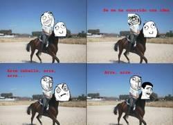 Enlace a Más te vale no apretar demasiado a un caballo