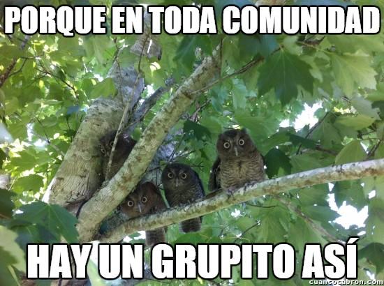 Meme_otros - No puede faltar el grupito de cotillas