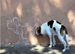 Enlace a A veces los animales se pasan de genius