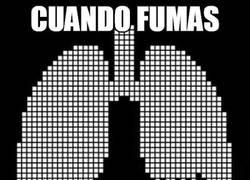 Enlace a ¡Dejad de fumar!