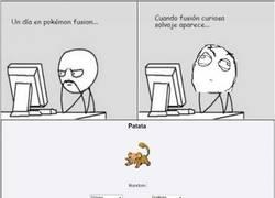 Enlace a El nuevo pokémon: Patata