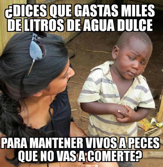 Meme_otros - Gastar agua en el primer mundo...