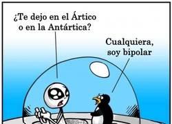 Enlace a ¿Ártico o Antártida? ¿Norte o Sur?