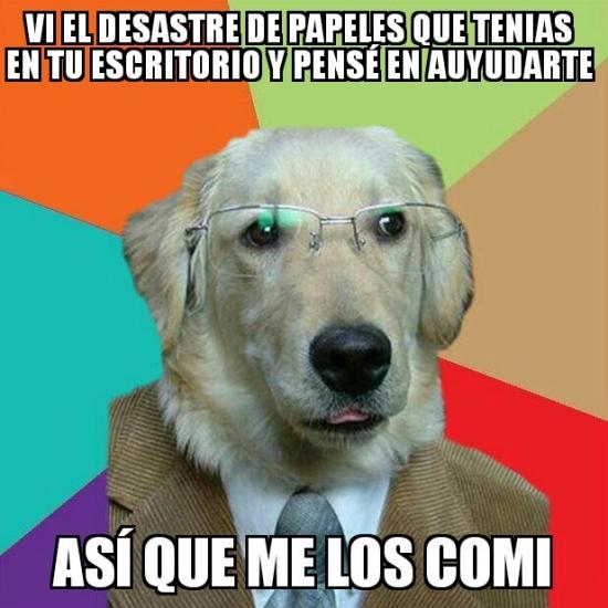 Meme_otros - El perro de negocios tambien sabe ayudar a un colega