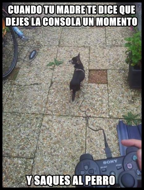 Meme_otros - Sacar al perro nivel: Gamer