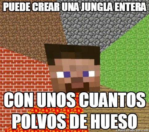 Minecraft - Cuando se acaben los bosques...