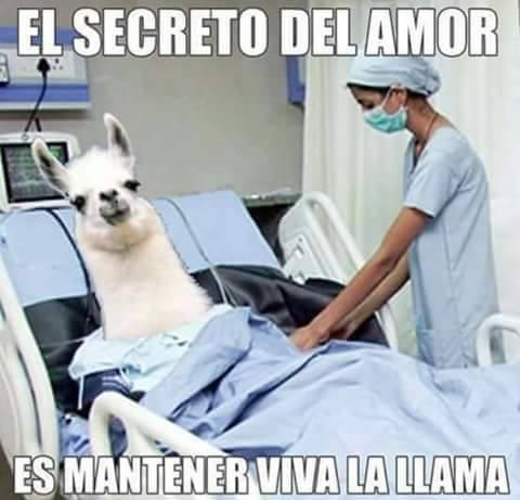 Meme_otros - El secreto del amor