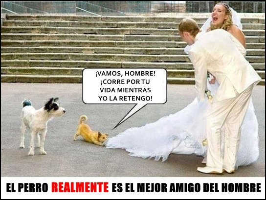 Meme_otros - ¡No te cases, es la ruina!