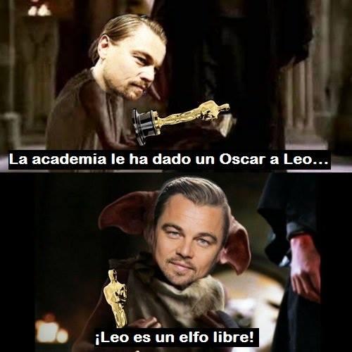 Meme_otros - DiCaprio es un elfo libre