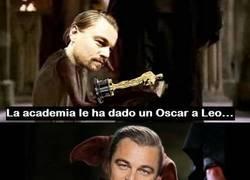 Enlace a DiCaprio es un elfo libre