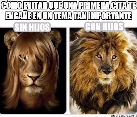 aprietos,apuros,desesperación,león,madre,melena,pelos