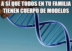 Enlace a Ese maldito ADN :(