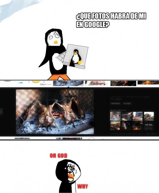 Oh_god_why - El auténtico terror del pingüino