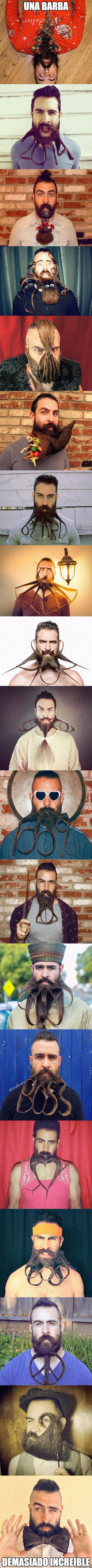 Meme_otros - La perfección en barba