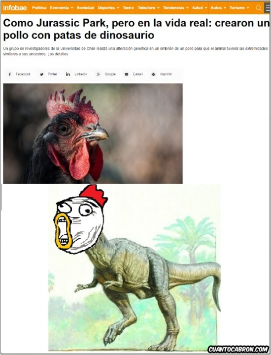 Otros - ¡¡Evolución inversa!!