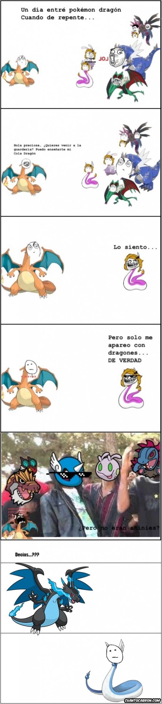 charizard,dragon,dragonite,pokemon