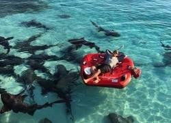 Enlace a Hay quien necesita mucha adrenalina en vacaciones