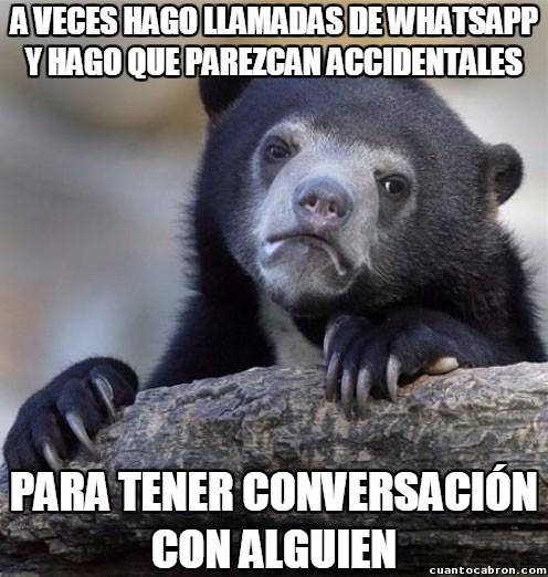 Oso_confesiones - Las llamadas de WhatsApp le son de gran ayuda...