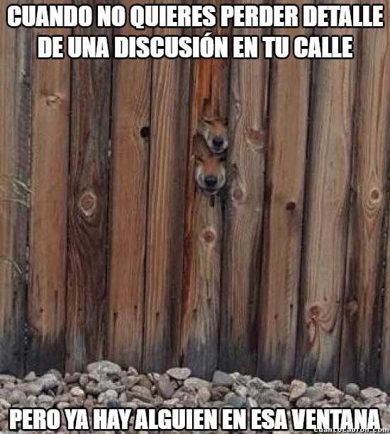Meme_otros - Y después dicen que no les gusta el cotilleo